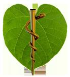 Ayurveda Medizin Logo